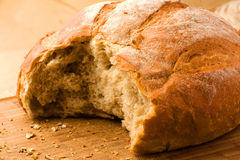 Oven-fresh loaf. A close-up of a new-baked loaf of bread with a wheat head Royalty Free Stock Photos