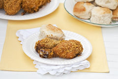 Oven Fried Skinless Chicken Royalty Free Stock Photos