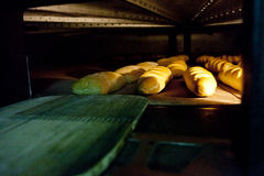 Oven inside plenty of bread Royalty Free Stock Image