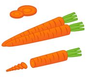 Oven-ready carrots Royalty Free Stock Photo