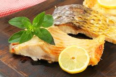 Oven roasted carp fillet Stock Image
