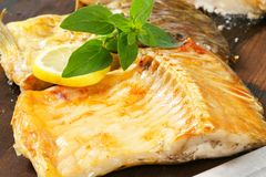 Oven roasted carp fillet Royalty Free Stock Images