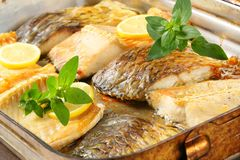 Oven roasted carp fillets Royalty Free Stock Photography
