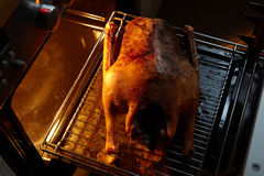 Oven roasted Goose Royalty Free Stock Photos