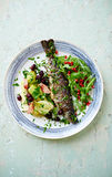 Oven-Roasted Trout with Vegetables and Arugula Salad Stock Photography