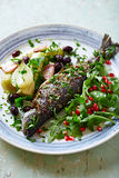 Oven-Roasted Trout with Vegetables and Arugula Salad Stock Images
