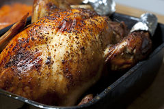 Oven Roasted Turkey stock photo