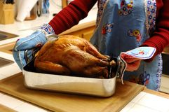 Oven Roasted Turkey. Fresh Out of the Oven Royalty Free Stock Photos