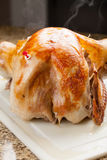 Oven Roasted Turkey fresh out of oven Royalty Free Stock Photos