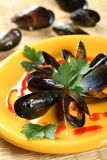Oven seafood in shells Stock Images