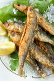 Oven sprats Royalty Free Stock Images