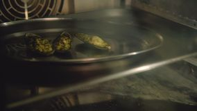 Oven van het receptentweekleppige schelpdieren van de zeevruchtenmaaltijd de kokende stock video