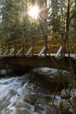 Over the bridge. A wooden bridge crossing a creek flowing with spring run off. The sun is shinning through the trees making this a magical moment Royalty Free Stock Image