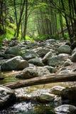 Over de rivier Stock Afbeelding
