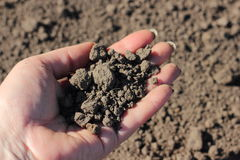 Over-dried soil Stock Photography