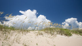 Over the Dunes. The weather was picture perfect for a an outing on Fort Fisher Royalty Free Stock Images