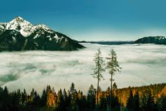 Alpine landscape in winter royalty free stock photo