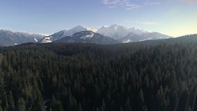 Over Forest Mountain Aerial 4k. Aerial footage of a beautiful lake in the forest with mountains in the background. Shot in Flims, Switzerland in 4k quality stock video