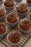 Over head view of chocolate cupcakes with frosting and garnish Stock Image