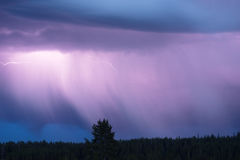 Over Norris Canyon Thunderstorm Lightning Strikes Yellowstone NP royalty free stock photography