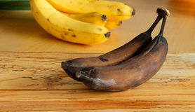 Over-ripe Black Bananas with Yellow Bananas Stock Photography