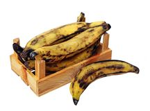 Over ripe plantain banana in crate Royalty Free Stock Photography