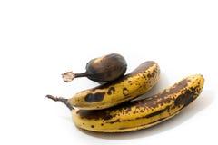 Over-ripened bananas, isolated. 3 over-ripened bananas, isolated on white Stock Image
