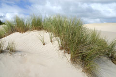 Over the Sand Dune. Storm clouds move in over one of a series of large sand dunes stock photography