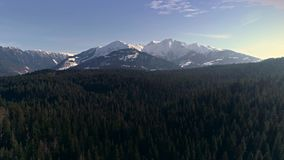 Over trees mountain aerial 4k. Aerial footage of a forest with mountains in the background. Shot in Flims, Switzerland in 4k quality stock footage