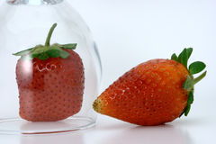 An over turned wine glass separating two red straw. One strawberry under an over turned glass and another one out side, with a white background Royalty Free Stock Images