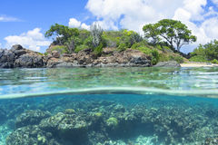 Over under Caribbean island and reef Royalty Free Stock Image
