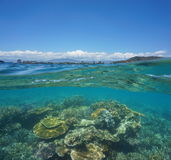 Over under coral reef New Caledonia Noumea. Over under water surface, beautiful coral reef underwater with the city of Noumea at the horizon, Grande-Terre, New royalty free stock photography