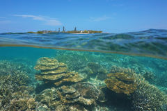 Over under ocean islet coral reef New Caledonia Royalty Free Stock Photo