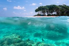 Over-under view of a tropical beach with lush tropical tree. And sunlight on sandy seabed below water surface, Andaman and Nicobar Islands. Neil,Havelock. The royalty free stock photos