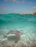 Over-under water at Bora Bora Stock Photography