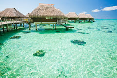 Over water bungalow with steps into amazing lagoon. Over water bungalow with steps into amazing green lagoon Stock Image