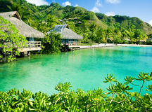 Over water bungalows and a green lagoon Royalty Free Stock Photos