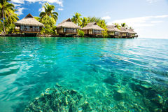 Over water bungalows with steps into green lagoon Stock Image