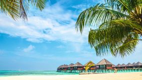 Over water bungalows and tropical sandy beach with palm tree, Maldives. Indian Ocean stock photography