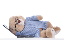 Over worked: teddy bear taking a nap on laptop isolated on white Stock Image