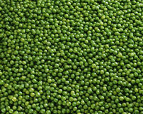 Overall of peas Stock Image