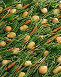 Overall of spring vegetables Stock Image