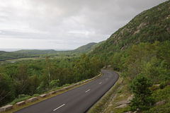 Overcast Acadia National Park Road Royalty Free Stock Photography