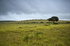 Overcast Day. An overcast and rainy summers day royalty free stock photography