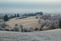 Overcast frozen landscape Royalty Free Stock Photo