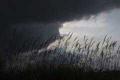 Overcast Stock Image