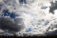 overcast niebo Obrazy Royalty Free