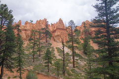 Overcast sky at Bryce Canyon Royalty Free Stock Photography