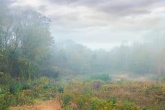 Overcast sky over the park meadow in fog. Gloomy autumn scenery royalty free stock photography