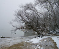 Overcast weather, snowy riverside Stock Image